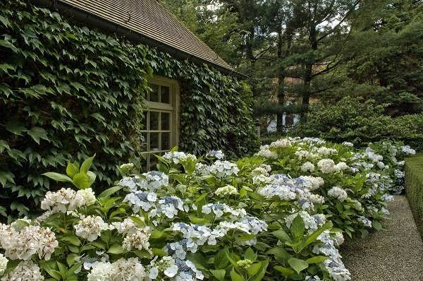 Gärten von Kilian, Gartengestaltung & Gartenpflege, Landschaftsgärtner, Garten